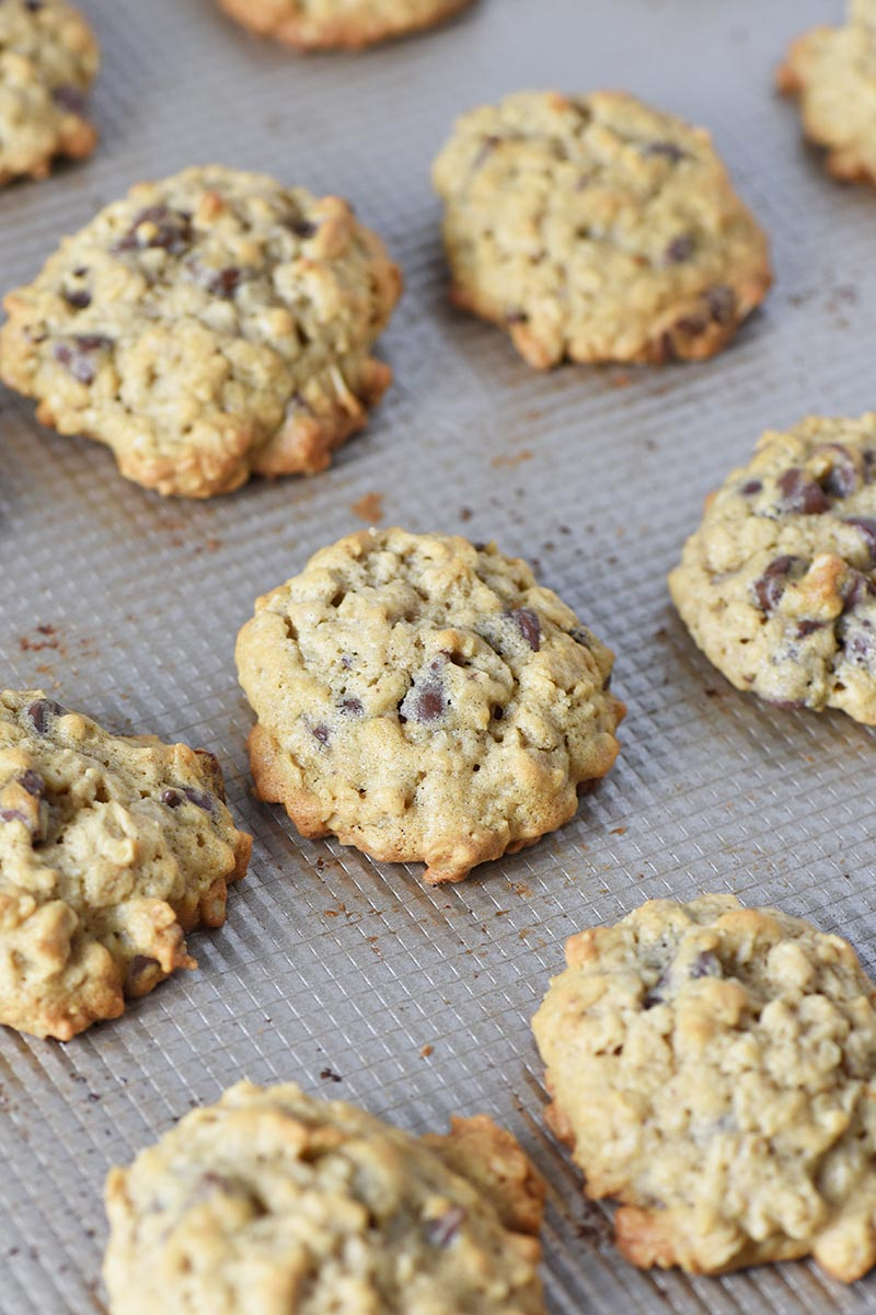 fresh baked oatmeal cookies with chocolate chips on cookie sheet
