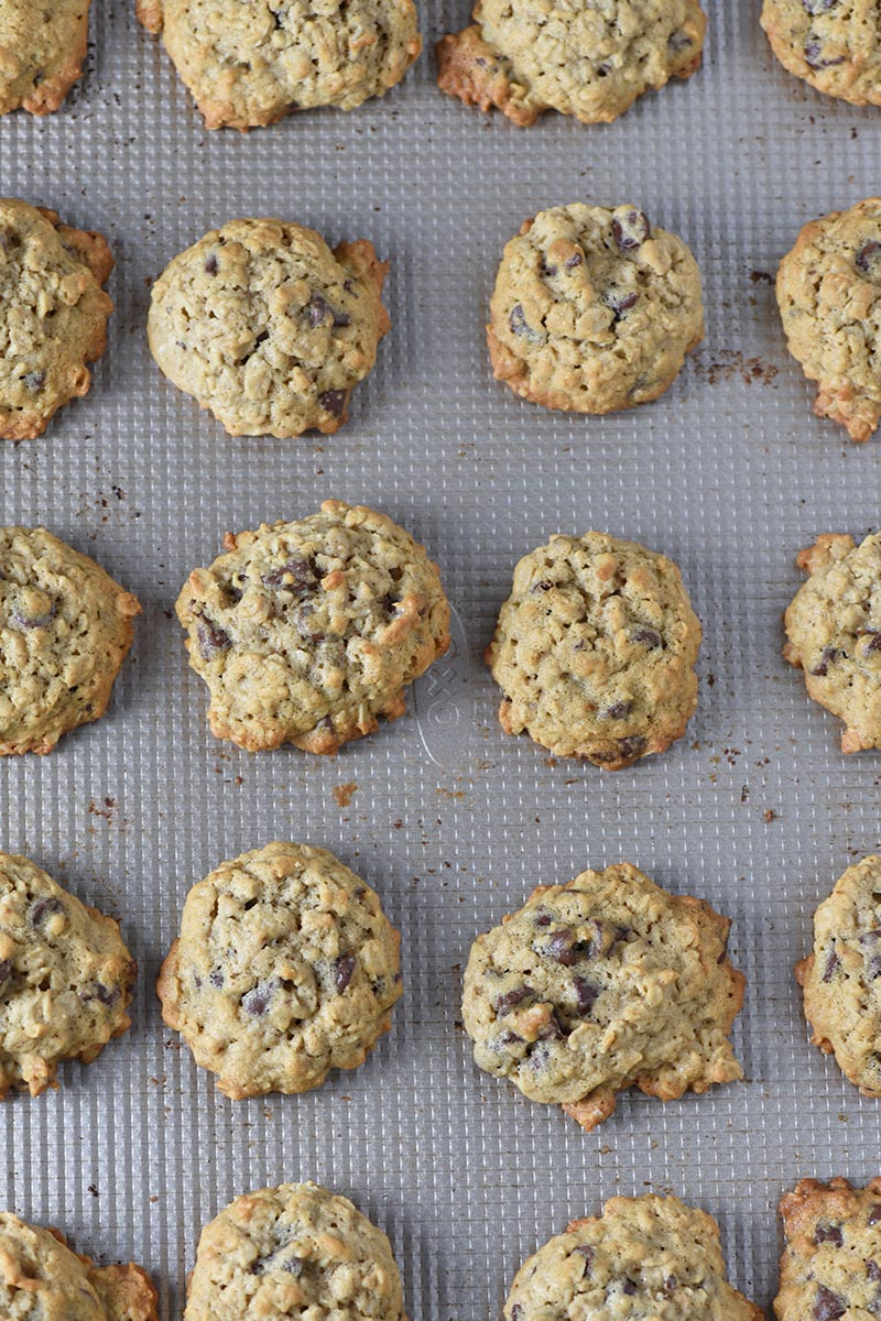 baked oatmeal chocolate chip cookies on cookie sheet