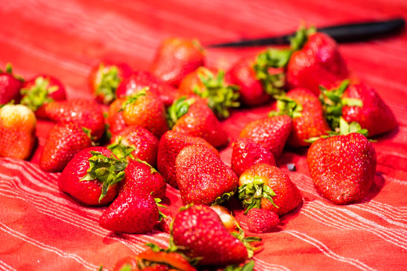 fresh strawberries on red and white striped kitchen towel